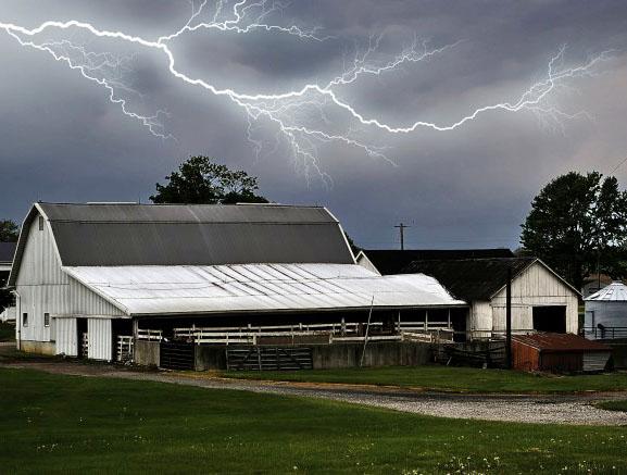 Raio en granxa