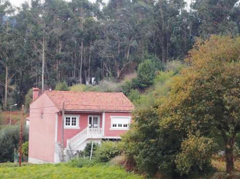 Casa con eucaliptos