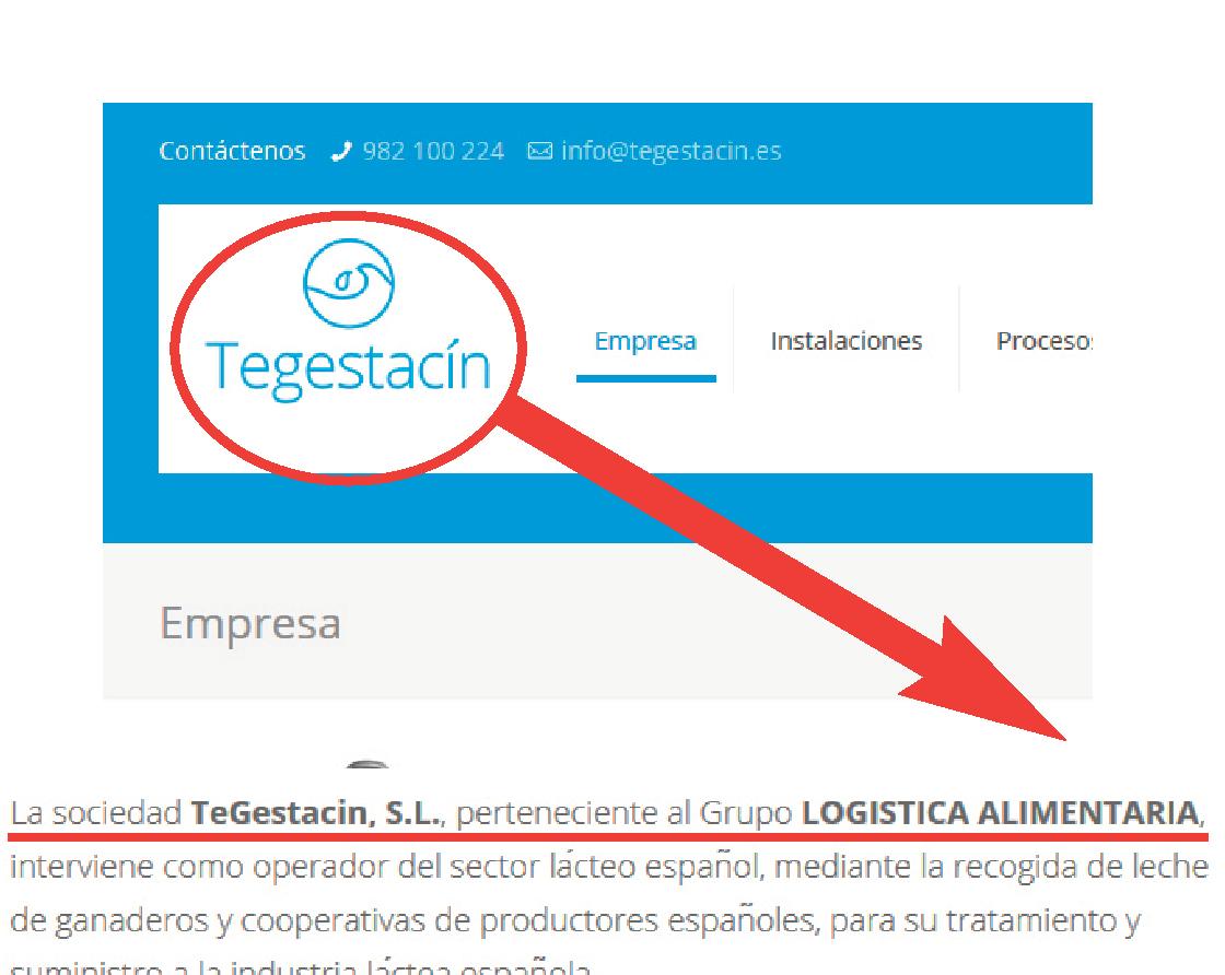 Tegestacin