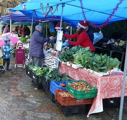 Mercado de Teo
