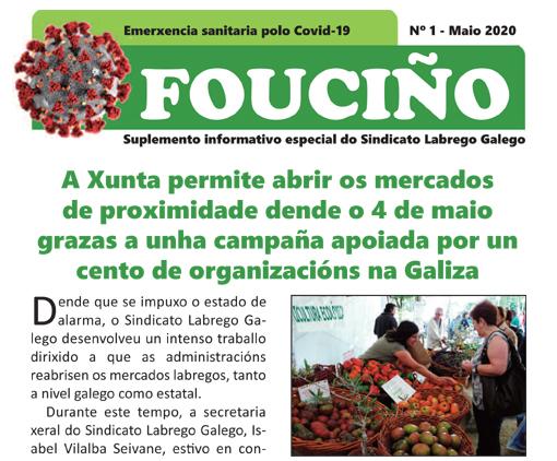 Portada Fouciño Covid 1