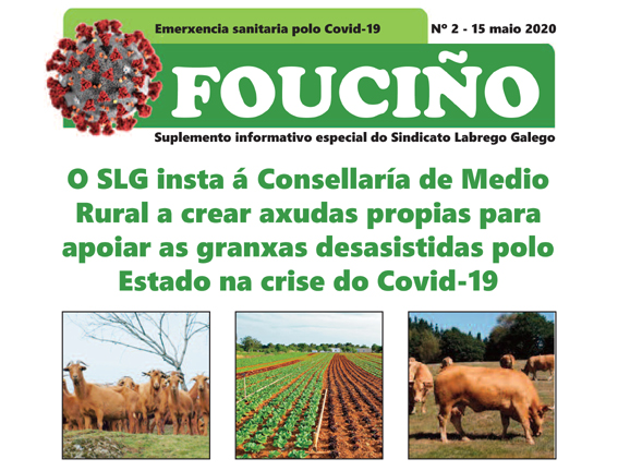 Fouciño covid 2