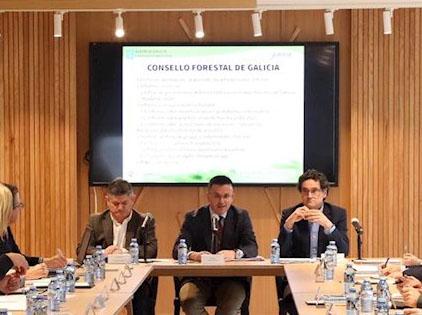 Consello Forestal de Galicia