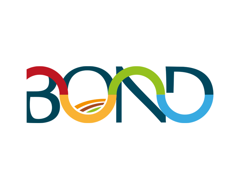 Xornada BOND online